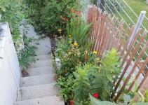Blick Richtung unterer Garten, Phlox, Rosen, Ringelblumen, unten: Hundsrose