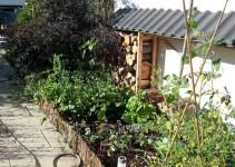 Gemüse-Hochbeet und Tomaten