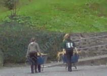 Morgens, halb 8 in Dillenburg: keiner ohne Schubkarre auf dem Hof zu sehen