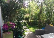 Weidenpavillon und Hortensie