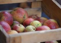 Äpfel (sony)