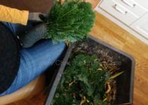 Zweigstücke mit Draht um Strohkranz winden