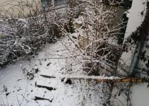 Weg in den unteren Garten mit Katzentreppe