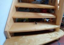 Wachhund auf Treppe